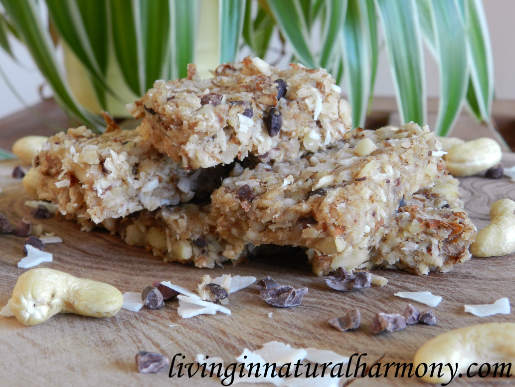 Recipe: Healthy raw energy bar (vegan)