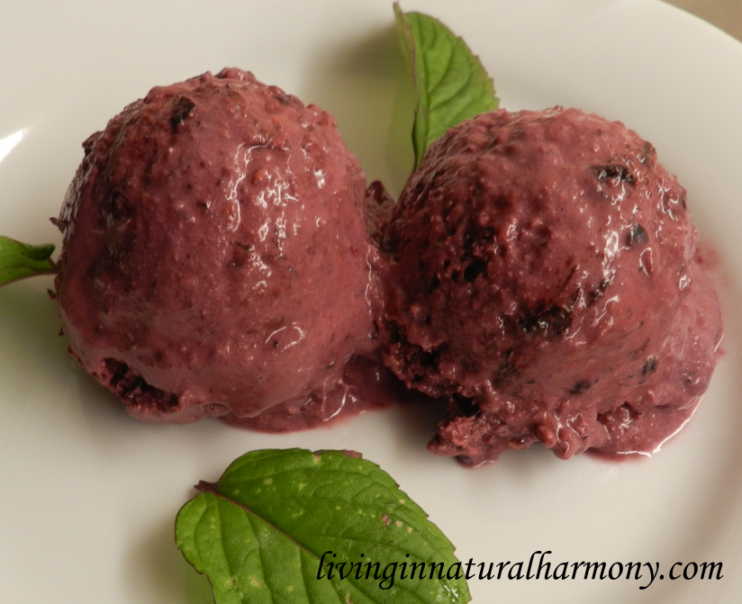 Recipe: Healthy berry ice cream (vegan)