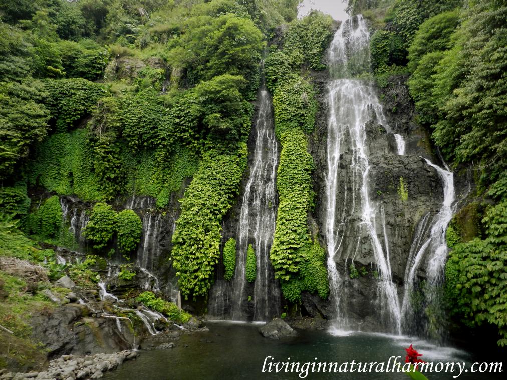 Bali: uma entrevista sobre sustentabilidade
