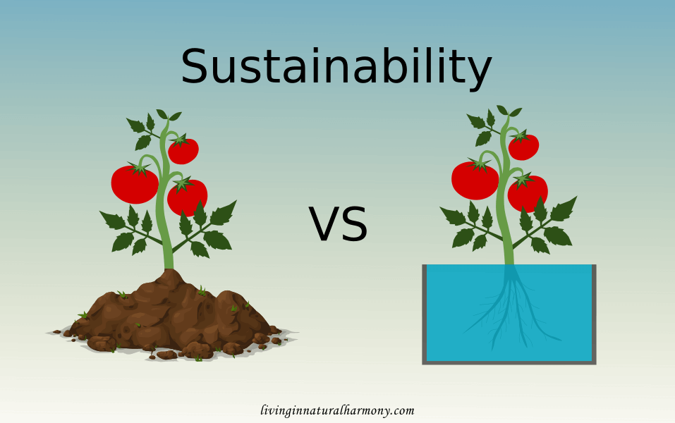 How sustainable are soilless growing systems?